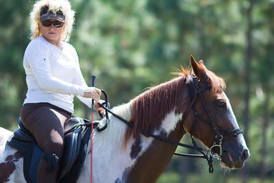 20130914_Horses_019