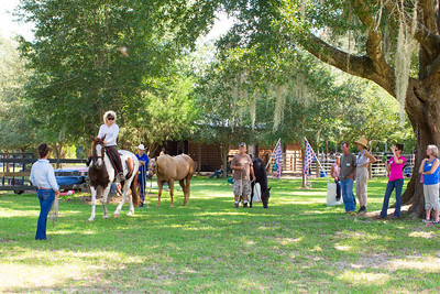 20130914_Horses_017