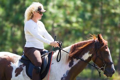 20130914_Horses_022
