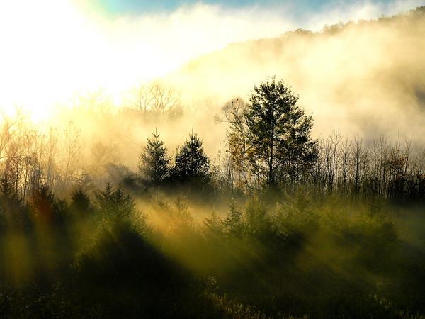 Nature - Landscape