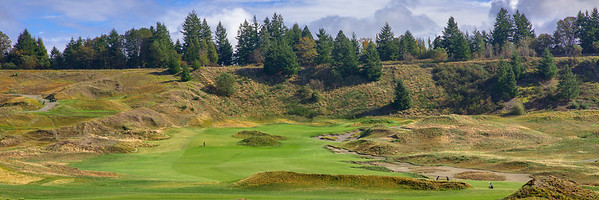 Chambers Bay Golf Course - 06