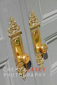 beautiful brass door handles on entry