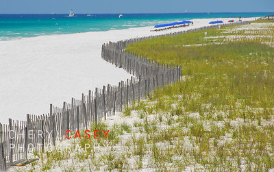 Sand dune fence and grasses at beautiful resort beach