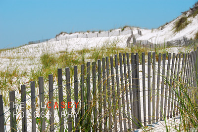 Beach sand dunes on hilly terrain with pretty fence and grasses