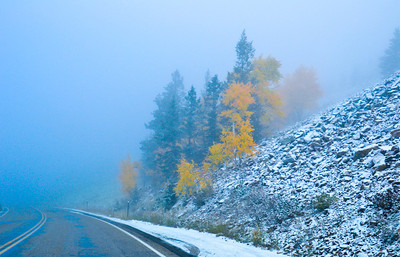 Early snow in Yellowstone