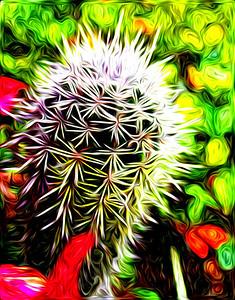 pixel bender, cactus