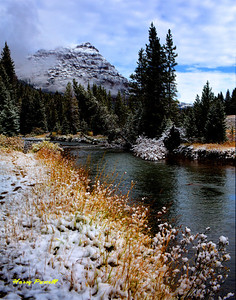 early snowfall, Yellowstone