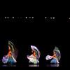 Plainwell Dance 2013 0082_edited-1