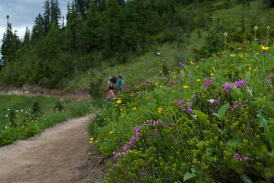 Naches Loop Trail in July.