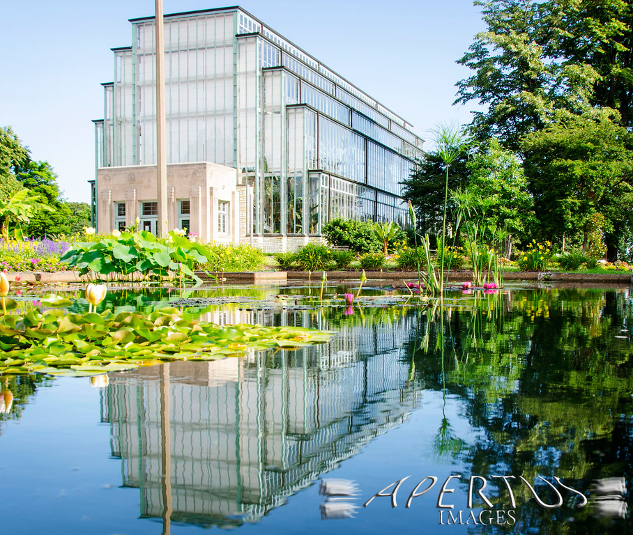 Taken in St. Louis at The Jewel Box (2013)
