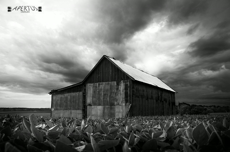 """""""Brewing Storm"""" (Captured in Otterville, IL, 2014)"""