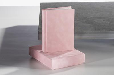 Baby Pink Album Book