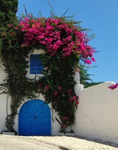 Blue doors and white stucco wall are found in many Mediterranean places. Judi found this on on our stroll through a suburb of Tunis, Tunisia. The Bougainvillea flowers really set it off.