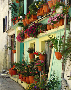 A nice potted flower garden in Italy