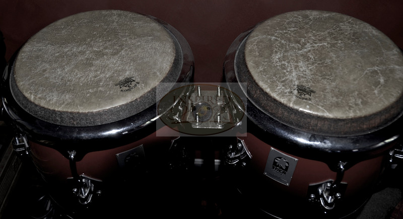 Congas, Percussion