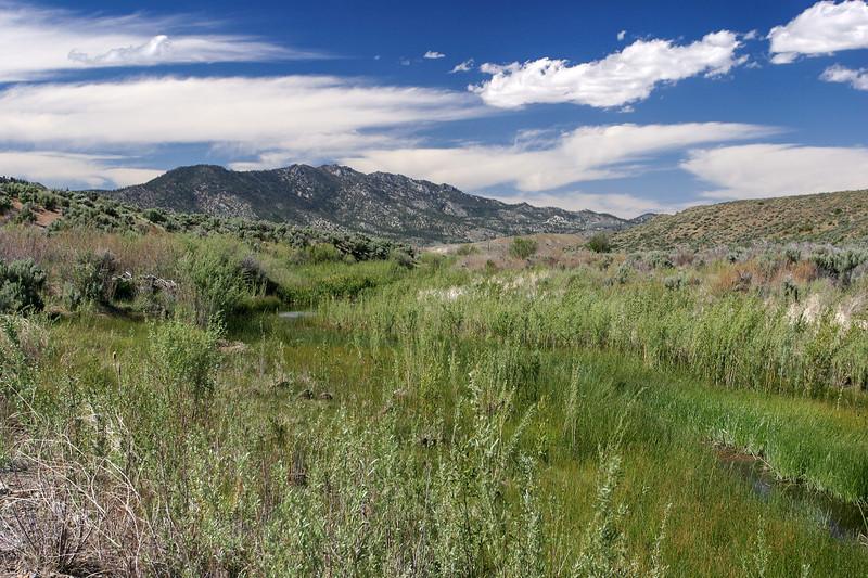 View of Adams Peak from Hallelujah Junction, California