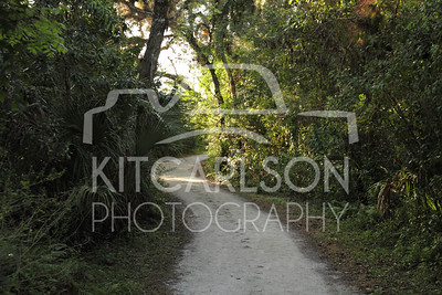 2015-01-11-KitCarlsonPhoto-033925 E