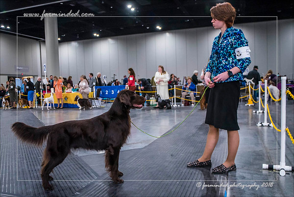 Sarah Brown - AKC 2018 - All Breed