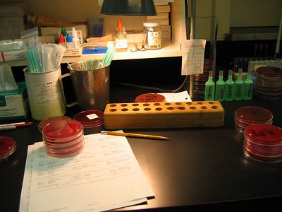 Microbiology workstation in our micro lab. Worksheet shown is used to keep records which are then entered in computer.