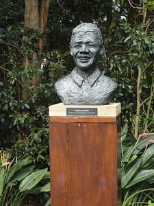 Kirstenbosch National Botanic Garden--statue of Nelson Mandela