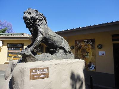 """Visit to """"Lion Park"""""""
