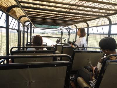 my tour bus