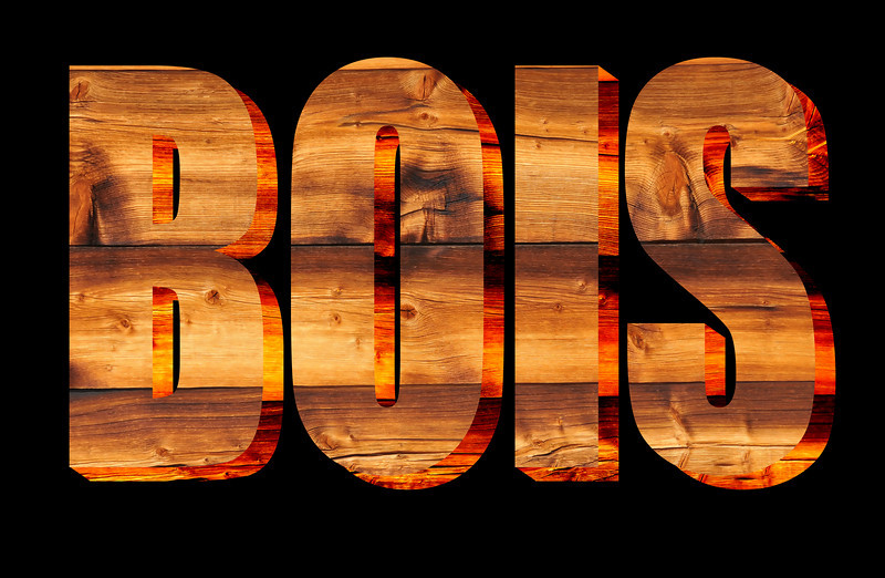 The word BOIS (french for wood) written in sun tanned pine against a black  background in relief