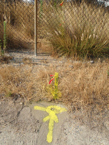 Set Spike&W LS5573 on North Riverwalk Easement line at Middle of Curve (MOC), radius = 3,985 ft.