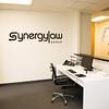 Synergy-52