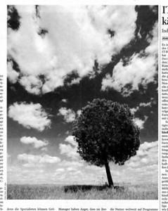 090603-handelsblatt