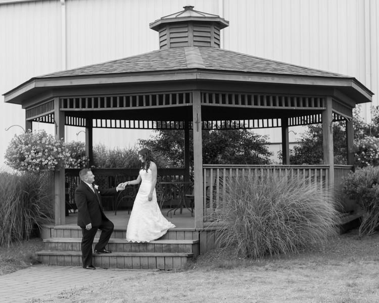 67-Ternasky Wedding
