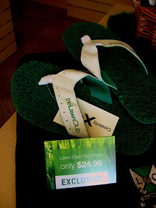 At the adjacent gift shop, astro-turf flip-flops go for only $24.99.
