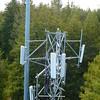 Adjacent Nextel and Verizon towers