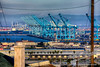 San Pedro Cranes<br /> by Jack Foster Mancilla - LensLord™<br /> _MG_9442