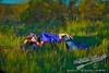 """Woman in the Grass  <a href=""""http://lenslord.com/2011/01/06/woman-in-the-grass/"""">Link to the article on my blog</a>"""