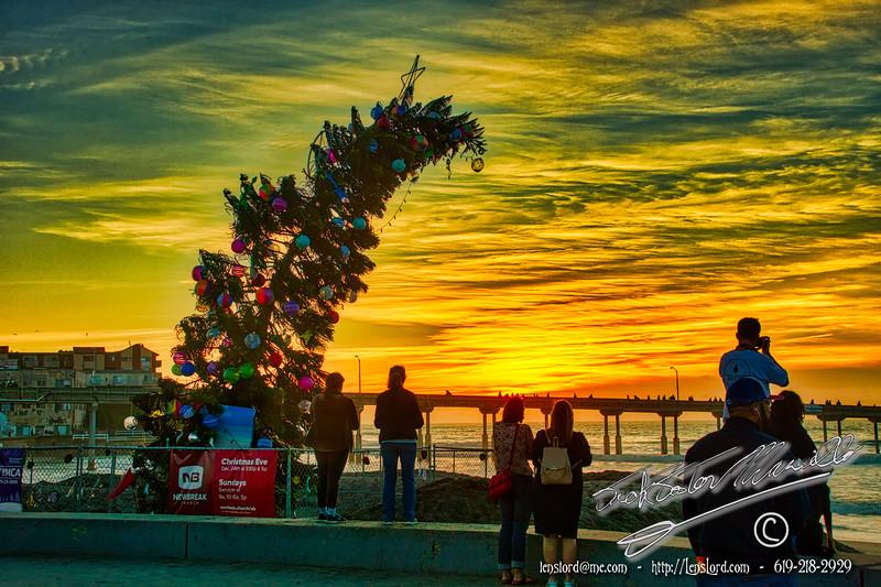 Ocean Beach Christmas Tree