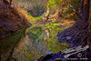 by Jack Foster Mancilla - LensLord™  by Jack Foster Mancilla - LensLord™<br /> InTheCanyonOfOwls