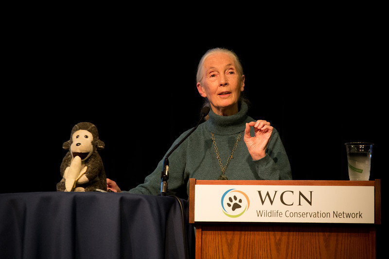 Dr. Jane Goodall speaks at a Wildlife Conservation Expo event in San Francisco.