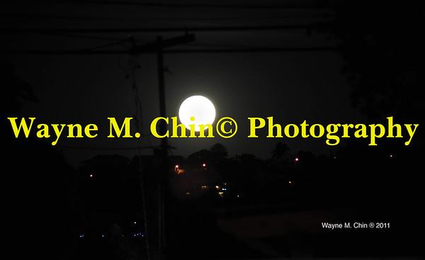 WMC_4886