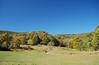 High Rocks meadow
