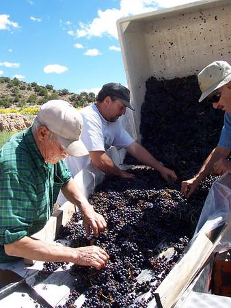 Working at Black Mesa Winery