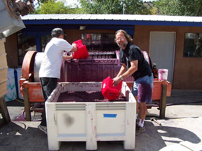 """Much of winemaking is still old-fashioned and low-tech. Here Chris and winery owner, Jerry, scoop fermented grapes into the press to squeeze out the wine. Earlier in the day Jerry was pumping some wine from the press to a tank and lost control of the end of the hose. He really likes to """"get into"""" his work!"""