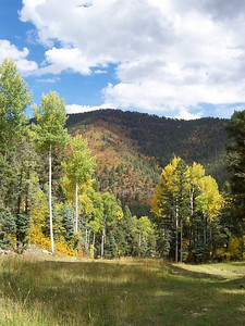 A beautiful Fall view on Sipapu's slopes. This photo was taken during lunch break on the mountain.