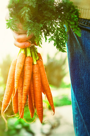 carrots_MJ_2