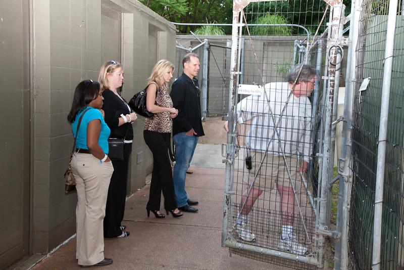 Zoofari Animal Tours