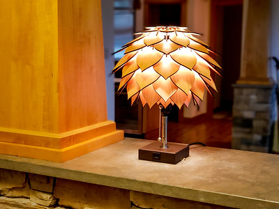 Spore lamp on cherry