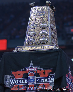 The PBR Cup has a value of over $ 250,000; the base is solid marble and the PBR Cup is comprised of gold, silver, and precious stones.  It is here you will find the names of the best bull riders in the world.