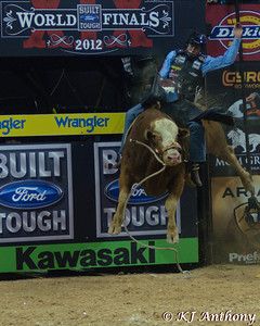 Zane Lambert on Buck Wild for 84.25.  It was the first night and Round One of the PBR World Finals at the Thomas and Mack Center on October 24, 2012, in Las Vegas Nevada.