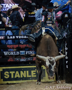 It was the Championship Round -  Round Six of the PBR World Finals at the Thomas and Mack Center on October 28, 2012, in Las Vegas Nevada.  Agnaldo Cardozo on Bushwacker.