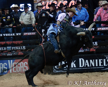 It was the Championship Round -  Round Six of the PBR World Finals at the Thomas and Mack Center on October 28, 2012, in Las Vegas Nevada.  Emilio Resende and David's Dream.